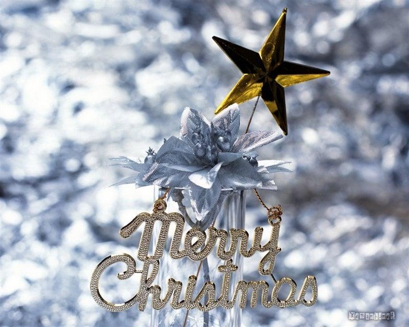 Quà Noel 2013, qua tang cao cap, Ma Vang 24k