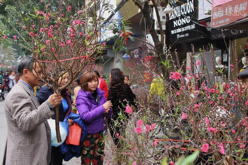 Tết hoa về trên phố, thị trường Tết 2014