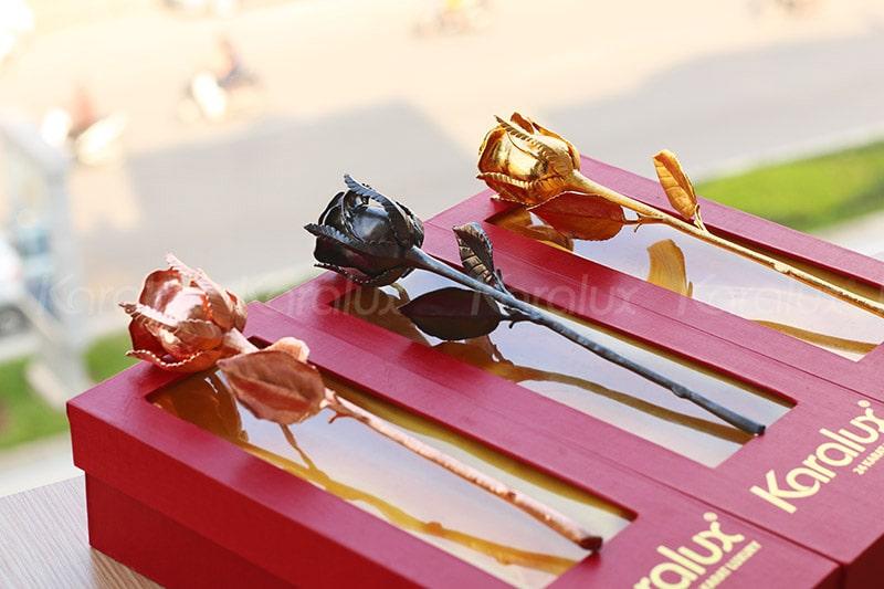 Hoa hồng mạ vàng đen, vàng hồng, vàng 24K