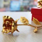 Bông hồng mạ vàng hé nở hoa 7