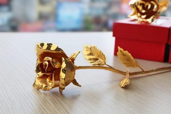 Bông hồng mạ vàng hé nở hoa 3