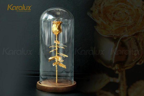 Bông hoa hồng mạ vàng với chụp thủy tinh Karalux 1