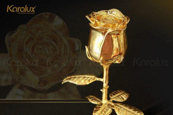 Bông hoa hồng mạ vàng với chụp thủy tinh Karalux 3